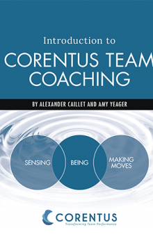 Introduction to Corentus Team Coaching