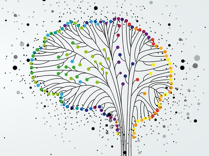Colorful tree branches depicting a brain