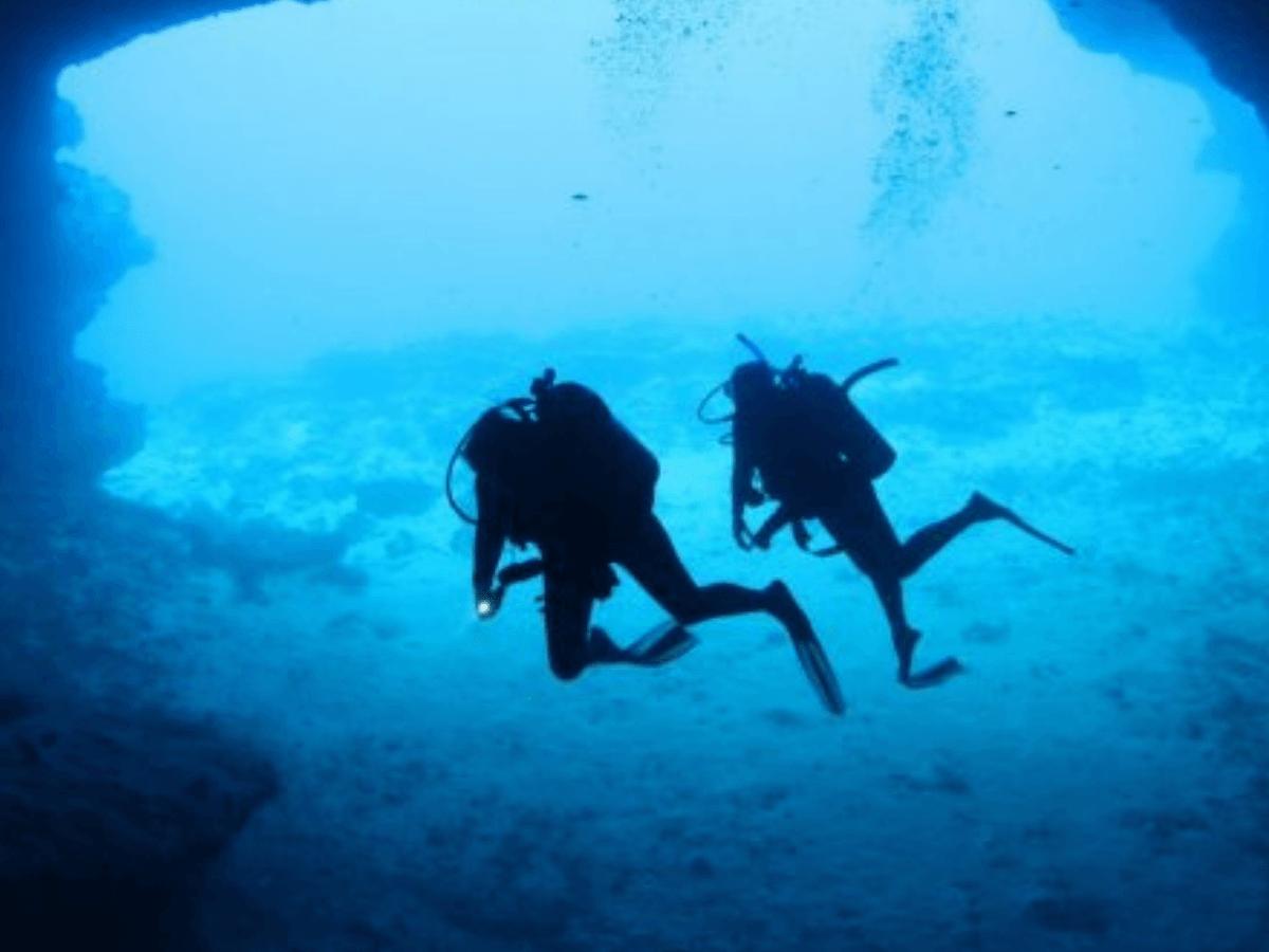 Webinar - Team Coaching Deep Dive