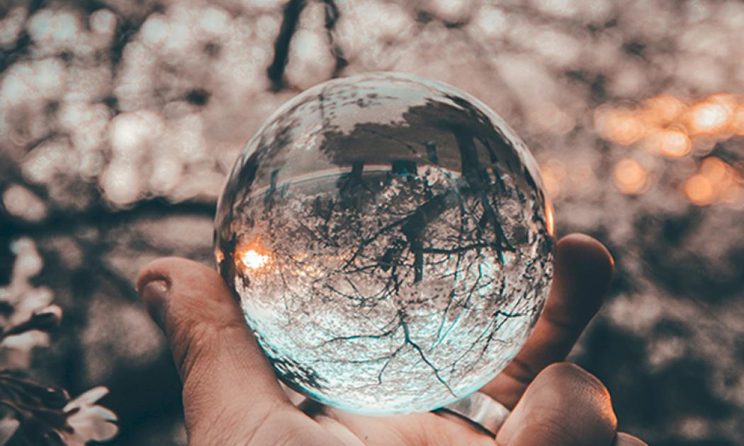 The background of the picture is a blurry tree that is flowering. A white hand in the bottom center of the picture is holding a clear globe in their hand. The globe is reflecting the background, and an upside down tree shows up in the globe.