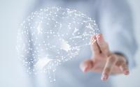 Brain and Health Performance
