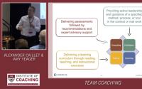 Team Coaching: The Art and Science