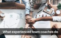 What experienced team coaches do