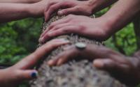 Multiple people's hands holding a fallen tree trunk
