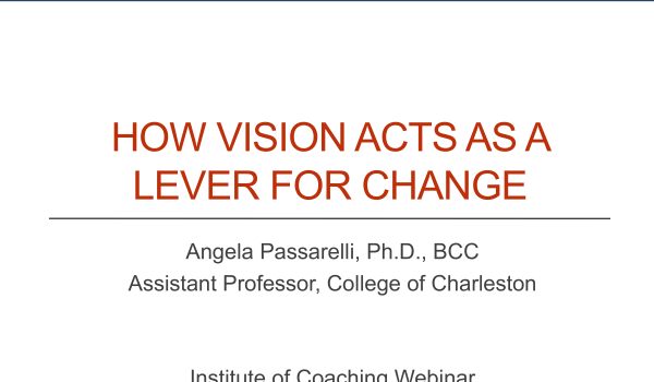 How Vision Acts as a Lever for Change
